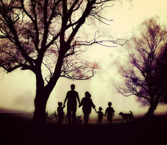 shared-parental-leave-low-uptake