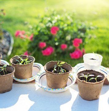 garden leave bonus payments